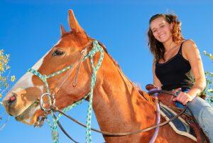Versicherung für Pferde ist wichtig